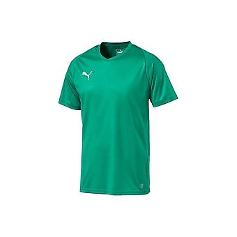 Puma Liga Jersey Core 70350905 fodbold sommer mænd t-shirt