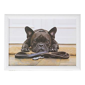 Laptop lap pillow or cushion French Bulldog