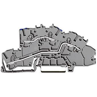 WAGO 2003-7649 Industrial terminal block 5.20 mm Pull spring Configuration: N, L Grey 1 pc(s)