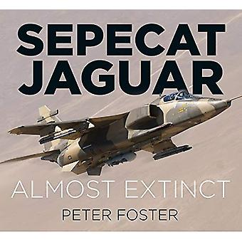 SEPECAT Jaguar: Lähes sukupuuttoon