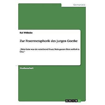 Zur Feuermetaphorik des jungen Goethe par Wbcke & Kai