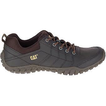 Caterpillar Instruct P722310 universal all year men shoes