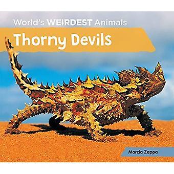 Devils épineux (animaux plus étranges du monde)