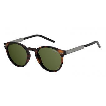 Sonnenbrille Herren   1029/SN9P/UC  Herren  havanna/grün