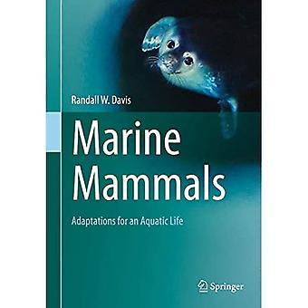 Marine Mammals: Adaptations for an Aquatic Life