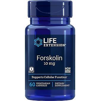 Lebensdauer Verlängerung Forskolin 10mg Vegicaps 60