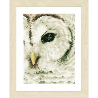 Lanarte Counted Cross Stitch Kit: Owl (Evenweave)