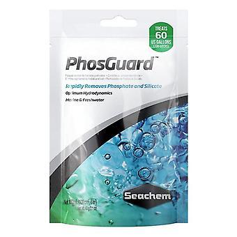 Seachem PhosGuard Phosphate/Silicate Control - 100 mL