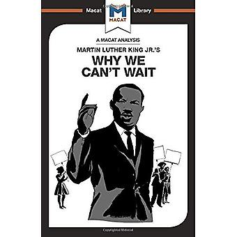 Why We Can't Wait (The Macat Library)