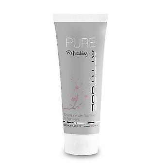 Haltung PURE Erfrischendes Shampoo 250ml