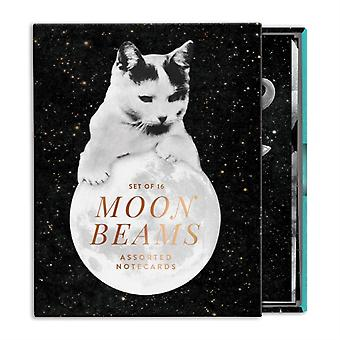 Moonbeams Greeting Card Assortment by Galison