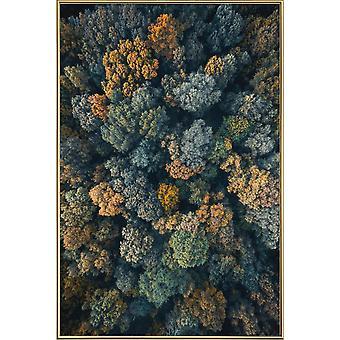 JUNIQE Print - Toscana - Skogsaffisch i brunt