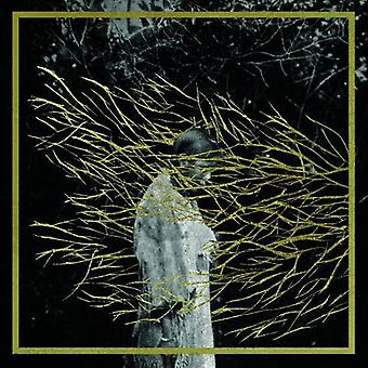 Forest Swords - Engravings [CD] USA import