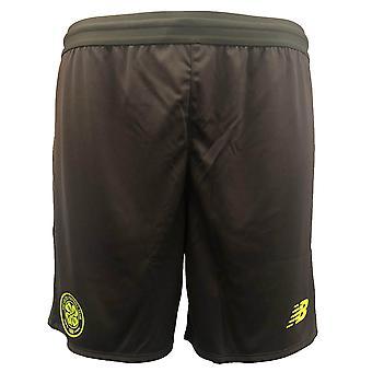 2018-2019 keltischen gestrickt Elite Trainings-Shorts (grau)
