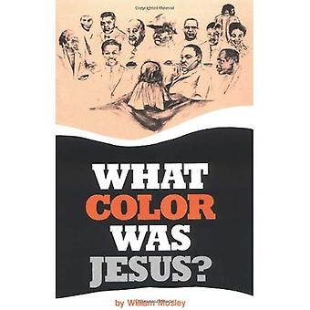 Vad färg var Jesus?: en galen ekonom tar en promenad