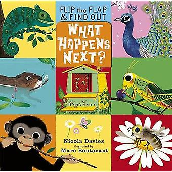 What Happens Next? by Nicola Davies - Marc Boutavant - 9780763662646