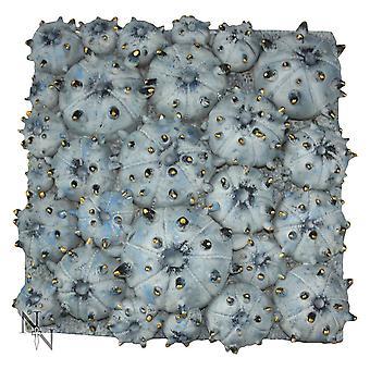 Nemesis Now Fossilised Urchins 31cm (Large)