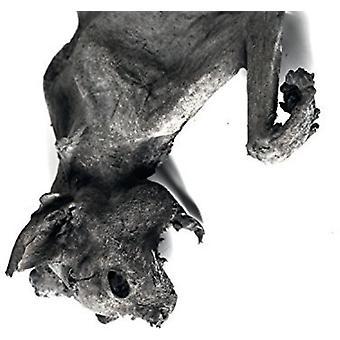 Nordvargr - Metempshychosis [CD] USA import