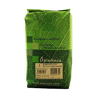 Cat's Tail Herb 1 kg