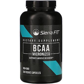 Sierra Fit, Micronized BCAA, Branched Chain Amino Acids, 1,000 mg Per Serving, 2