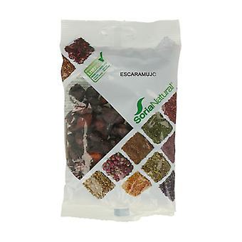 Rosehip Bag 100 g