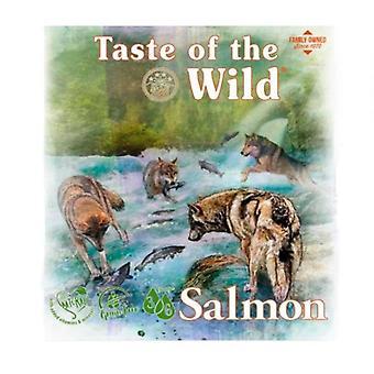 Taste of the Wild Salmon & Herring Sandwich (Dogs , Dog Food , Wet Food)