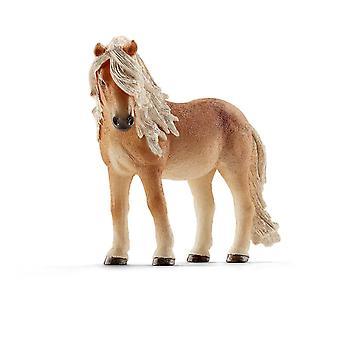 Ant farms 13790 - horse club icelandic pony mare