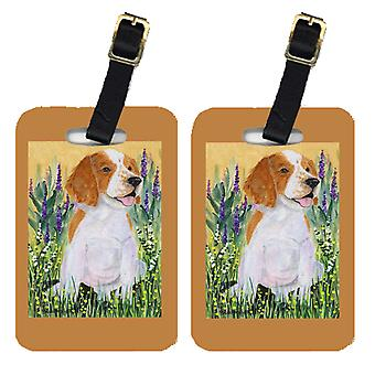 Carolines Treasures  SS8219BT Pair of 2 Welsh Springer Spaniel Luggage Tags