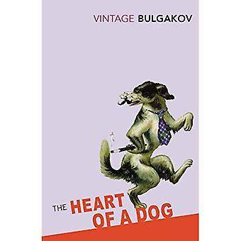 Hjärtat av en hund (Vintage klassiker)