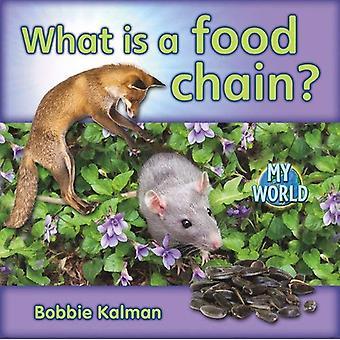 Was ist eine Nahrungskette?
