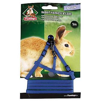 Flamingo Petral and leash for rabbits (Small pets , Leads & Harnesses)