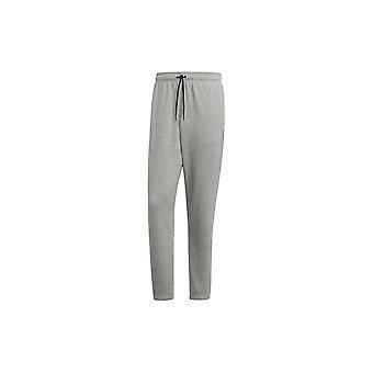 Adidas E Lin T PN FL FI0866 universal all year men trousers