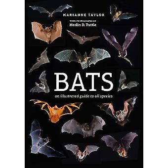 Bats - An illustrated guide to all species by Marianne Taylor - 978178
