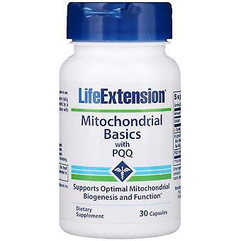Prolongation de la durée de vie utile, Bases mitochondriales avec PQQ, 30 capsules