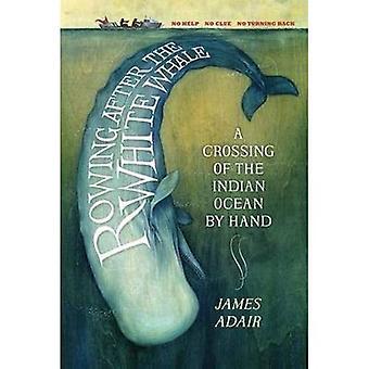 Wiosłowanie po biały wieloryb: przeprawę przez Ocean Indyjski ręcznie