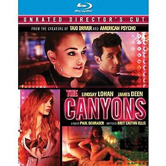 The Canyons [Director's Cut] [Blu-ray] [BLU-RAY] USA import
