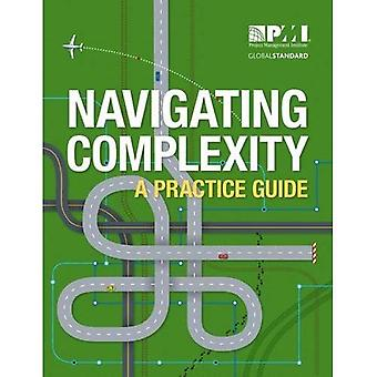 Navigating Complexity: A Practice Guide