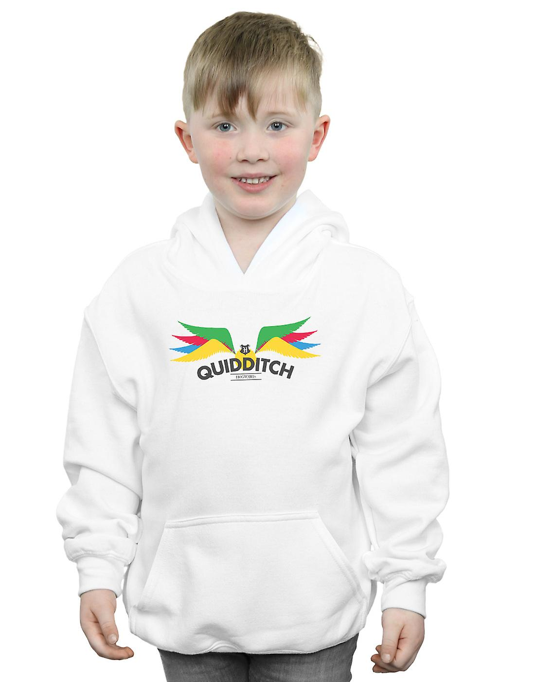 Harry Potter Boys Snitch Wings Pastels Hoodie