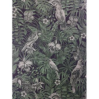 Tropical Birds Palm Leaf Wallpaper Green Black Paste Wall Vinyl A.S Création