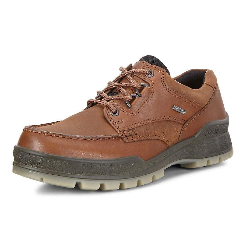 ECCO Track 25 - 831714 - Men's Gore-tex Walking Shoes In Bison oUc3m2