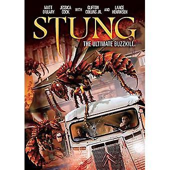 Stoeng [DVD] USA importeren