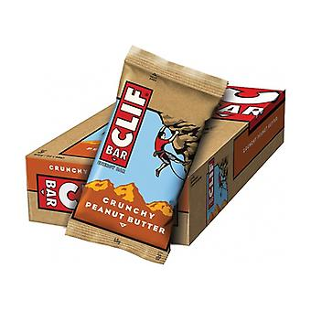Peanut Butter and Oatmeal Energy Bar 1 bar of 68g
