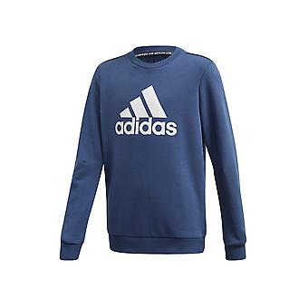 Adidas JR Must Haves Crew FM6446 evrensel tüm yıl erkek sweatshirt