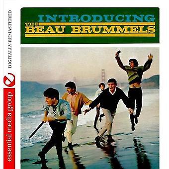 洒落男 Brummels - 洒落男 Brummels [CD] 米国を導入することをインポートします。