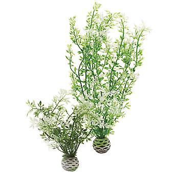 BiOrb Winter Flowers Plant Pack