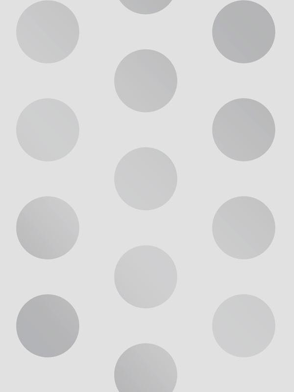 Big Dots Polka Dot Wallpaper Silver / Grey A617 CAO 4