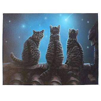 Lisa Parker Wish Upon A Star Canvas