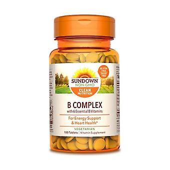 Sundown Naturals Vitamin B-Complex, 12 X 100 Tabs