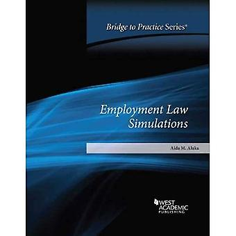 Employment Law Simulations: Bridge to Practice (Bridge to Practice)