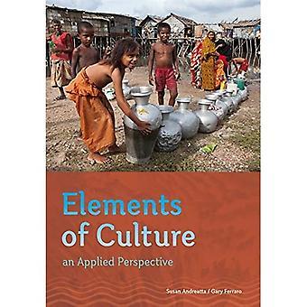 Elementos da cultura: uma perspectiva aplicada